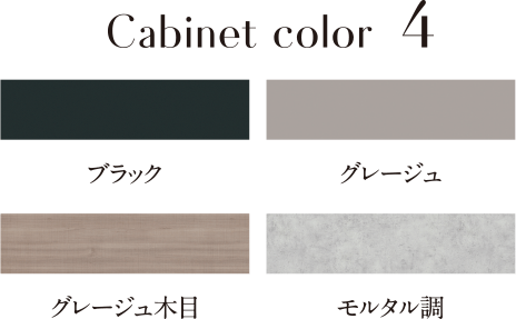 Cabinet color4